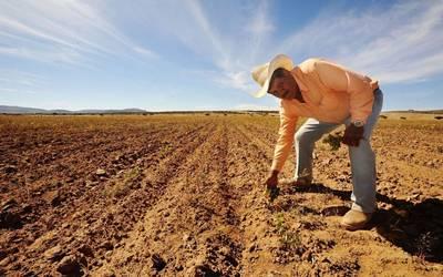 """Seguirán sequías en Sonora, no llegará """"Genevieve"""" - El Sol de Hermosillo"""